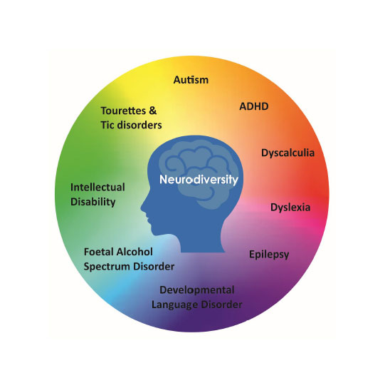Neurodiversity image of a silhouette with names of conditions around it, namely autism, ADHD, Dyscalculia, Dyslexia, Epilepsy, Developmental Language Disorder, Foetal Alcohol Spectrum Disorder, Intellectual Disability, Tourettes and Tic disorders